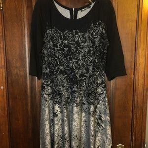NIC + ZOE | Knit Dress